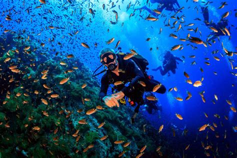 dive in diving in koh samui thailand dive the world vacations