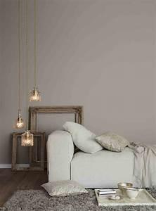 Taupe Grau Wandfarbe : graue wand im wohnzimmer alpina feine farben no 06 d cher von paris ~ Indierocktalk.com Haus und Dekorationen
