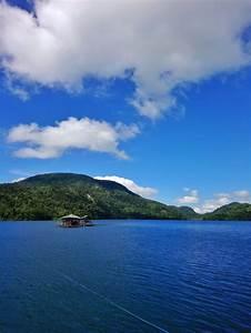 Lake, Danao, U0026, Pineapple, Plantation, Leyte, Day, Tour