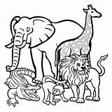 Coloring Dog Wild African Printable Getcolorings sketch template