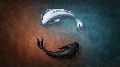 Yang Yin Koi Zen Fish Digital Symbol