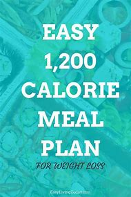 diet plan 5 times a day