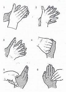 How To Wash Our Hands Well