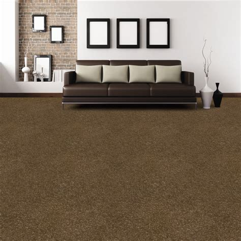brown carpet living room ideas brown carpet neutrals rooms we wish we had