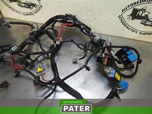 Renault Clio Iv Workshop Wiring Harness