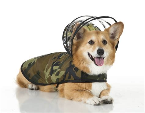 pampered pooches  raincoats  detachable hoods