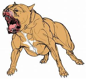 Mean Pitbull Dog Drawing
