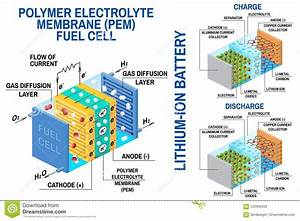 Fuel Cell And Li