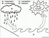 Water Cycle Pages Coloring Printable Print sketch template