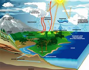 Lensclutcolunch  Water Cycle Diagram With Labels
