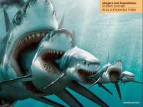 Megalodon Monster Shark