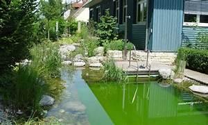 schwimmteich im eigenen garten planungswelten With französischer balkon mit garten schwimmteich