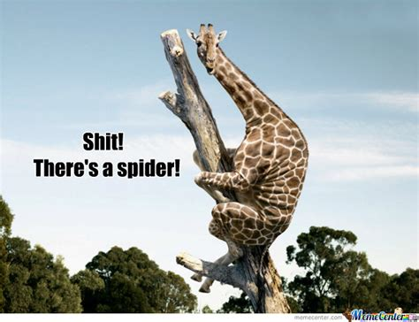 Afraid Of Spiders Meme - even giraffes are scared of spiders by swag wolf gang meme center