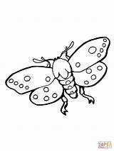 Coloring Moths Moth Insect Pages Stikbot Realistic Atlas Template Supercoloring Bot Stick sketch template
