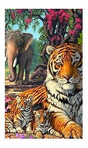 Tigers Family Exotic Birds Paun Elephants Jungle Nature Hd ...