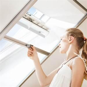 Insektenschutz Für Dachfenster : rolll den mit insektenschutz f r den sommer energie ~ Articles-book.com Haus und Dekorationen