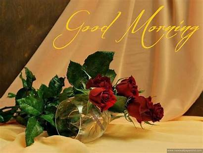 Morning Wallpapers Stylish Rose Hindi Iphone Afternoon