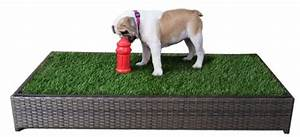 8 dog potties and toilets that are better than trees for Indoor dog bathroom solutions