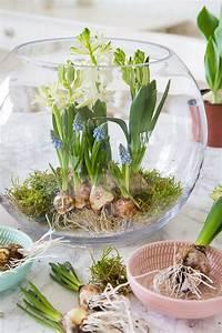Blumen In Der Box : fr hlingserwachen mit blumenzwiebeln dekorieren deko ostern fr hling pinterest fr hling ~ Orissabook.com Haus und Dekorationen