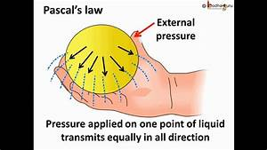 Physics - Fluid Pressure And Pascal U0026 39 S Law - English