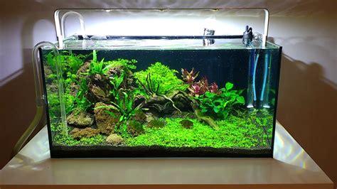 Diy Aquascape by Aquascape Aquarium Lava Rock Driftwood Diy Led Lights
