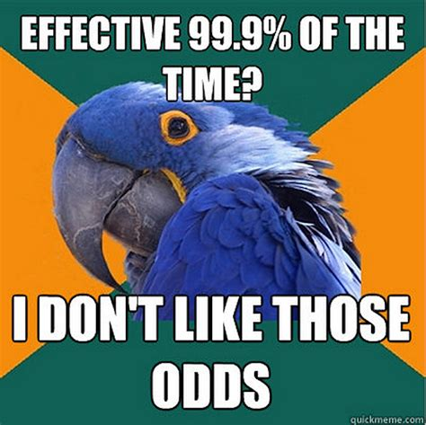 Parrot Meme - the funniest paranoid parrot memes