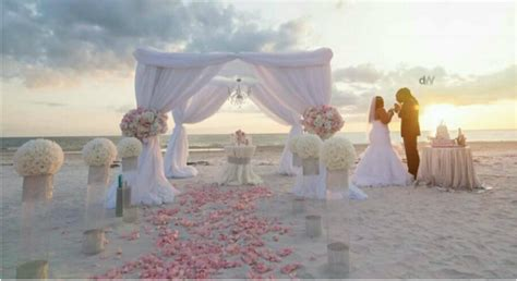 Cherished Ceremonies Weddings   Tampa Wedding Wedding Planner Beach Wedding
