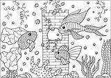 Aquarium Fishes Coloring Tree Plants Aquatic Pages Adults Adult Fins Castle Patterns Three Animals sketch template