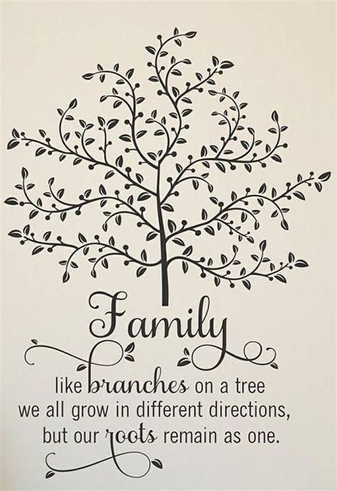 family  branches   tree quote quotes  sayings