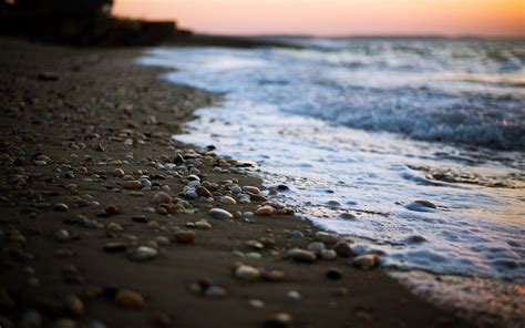 daily wallpaper pebble beach    waste  time