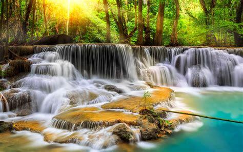 cascade waterfall  exotic tropical vegetation green