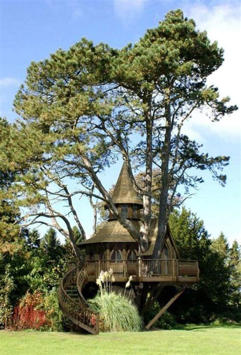 amazingly cool tree houses pinoy eplans