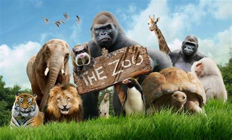 zoo animals hello charlie poster zoos title custodians series broadcast hellocharlie