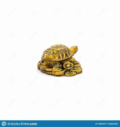 Turtle Isolated Chinese Traditional Chinesa Isolada Ouro