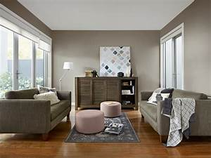 Brown Coloured Living Room Inspirations Paint