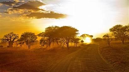 Sunrise African Forest Wallpapers Desktop Africa 4k