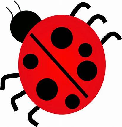 Bug Clipart Clip Insect Lady Bugs Cliparts