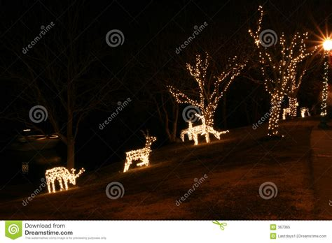 christmas deer lights royalty free stock photo image 367365