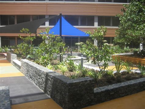pa hospital atrium garden penfold projects landscape