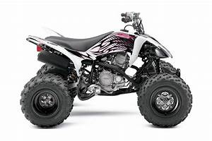Quad Yamaha 250 : 2010 yamaha raptor 250 ~ Medecine-chirurgie-esthetiques.com Avis de Voitures