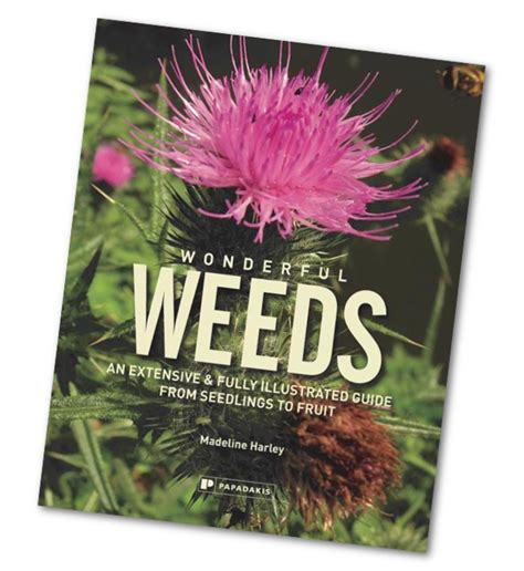 Wonderful New Book Gardeners by Wonderful Weeds Book The Enduring Gardener