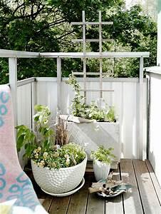 Balkon Gestaltungsideen Pflanzen : balkon pflanzen coole ideen f r eine gr ne entspannungsecke ~ Lizthompson.info Haus und Dekorationen