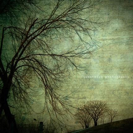green mysterious trees art