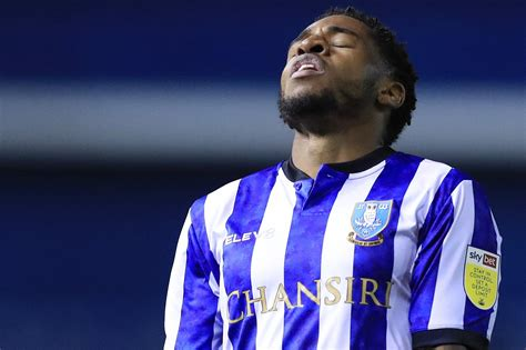 Sheffield Wednesday man gives honest assessment as Owls ...