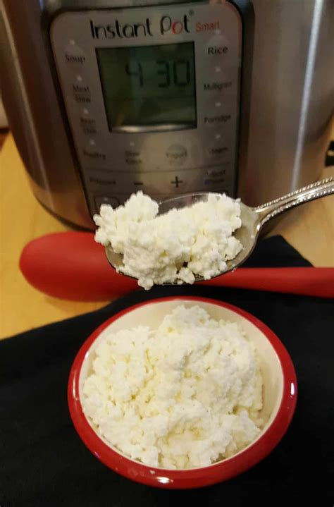 cottage cheese recipes instant pot cottage cheese recipe this gal