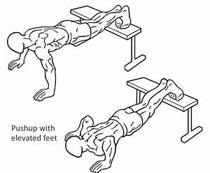 Complete Bodyweight Exercise Guide