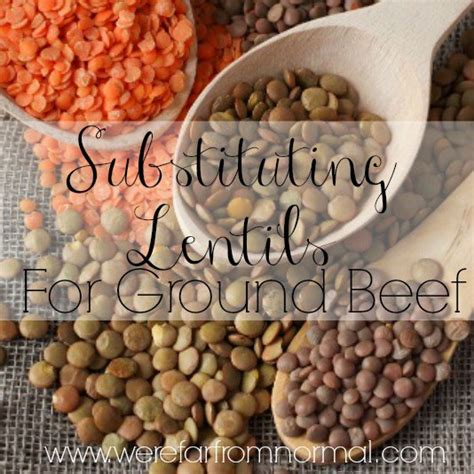 substitute for ground substituting lentils for ground beef far from normal