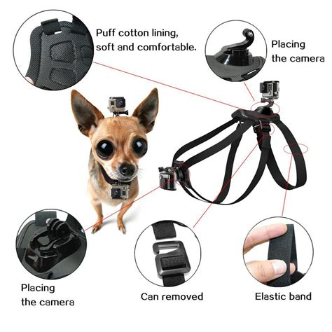 pro fetch dog mount dog harness chest strap mount  gopro hero   session   sj dog