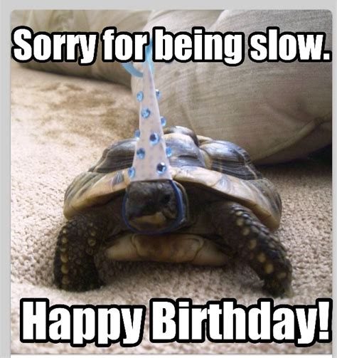 Belated Birthday Memes - late birthday iiiii happy birthday iiiii pinterest late birthday birthdays and humor