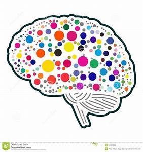Colorful Polkadot Brain Stock Vector  Illustration Of